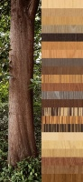 ABET Wood, natural touch 1