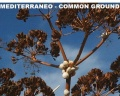 Mediterraneo – common ground 1
