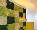 Studio Speri anima di verde l'headquarter di VIP CKH in Lussemburgo