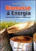 Biomasse & energia
