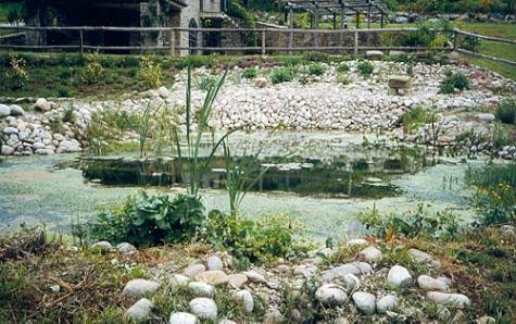 Impermeabilizzanti per stagni e laghetti ornamentali for Laghetti ornamentali