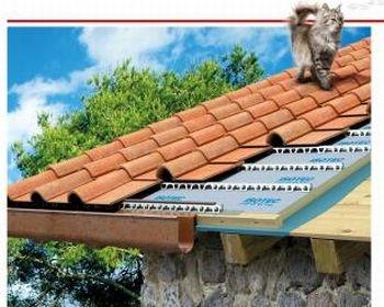 Isotec di Brianza Plastica: una campagna a quattro zampe, per un tetto a sette vite