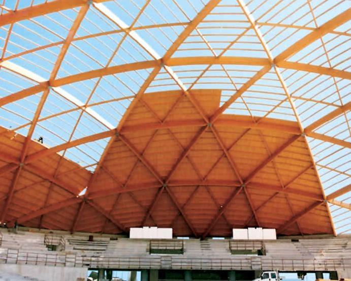 Copertura In Legno Lamellare : Copertura geodetica in legno lamellare