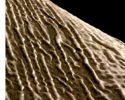Tessuto a base cemento