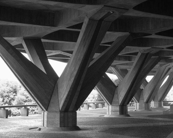 Pier Luigi Nervi, architettura come sfida