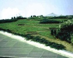Vulcaflor: Tappeti verdi – Giardini pensili