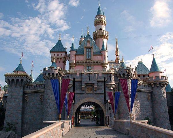 Disneyland sceglie Ideal Work