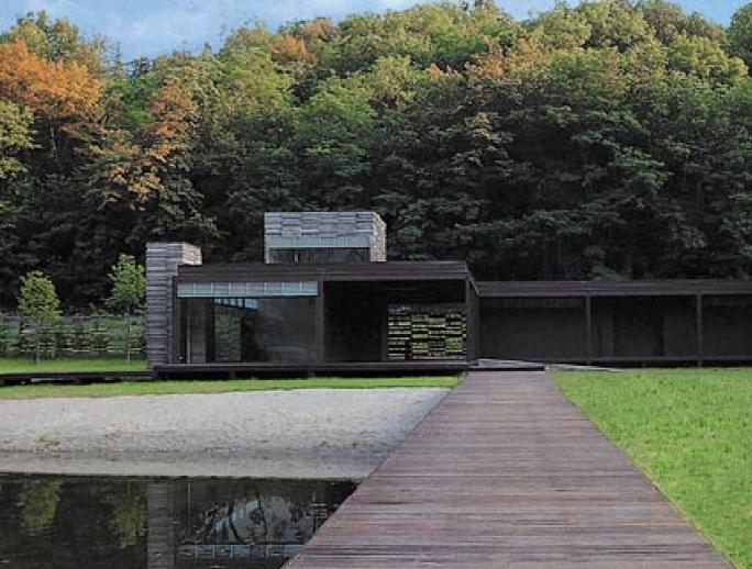Il legno e l'acqua