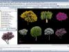 Tipologie alberi 3D