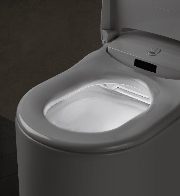 grohe sensia arena wc con bidet integrato. Black Bedroom Furniture Sets. Home Design Ideas