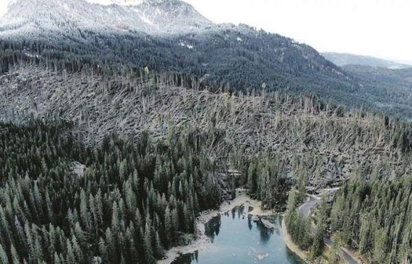 La zona di Fiemme colpita dal maltempo (foto, Comune info)