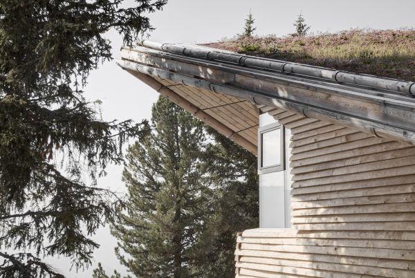 Il tetto dello Chalet Odles rivestito in verde