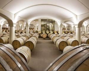 Nuova sede della azienda vitivinicola Umberto Cesari