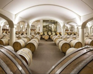 Nuova sede della azienda vitivinicola Umberto Cesari 1