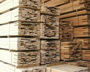 L'industria delle latifoglie americane sostiene l'UE nella lotta al commercio illegale del legno 1