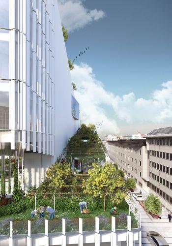Render della vigna verde di Vitae, Reiventing Cities a Milano