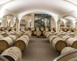 Nuova sede della azienda vitivinicola Umberto Cesari 2