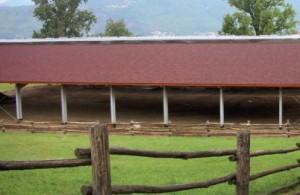 ONDULINE nel settore agricolo ed equestre 2