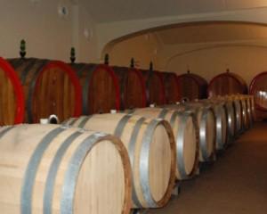 Nuova sede della azienda vitivinicola Umberto Cesari 3
