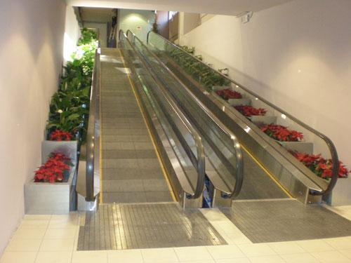 Tappeti e scale mobili - Sognare scale mobili ...