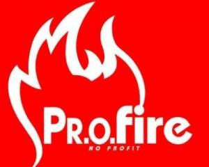 """Convegno Profire """"Progettazione e la nuova modulistica: cert.rei 2012 1"""