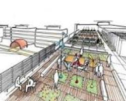 Piano disegna il campus a dimensione umana a Parigi 1