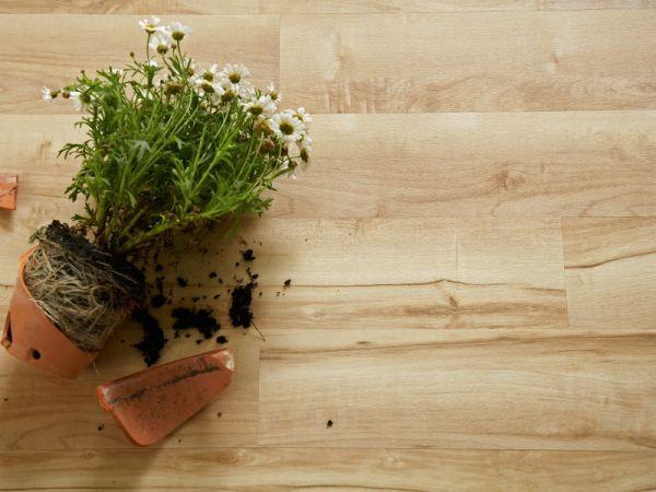 Pavimenti vinilici Camaro-Wood a incollo di liuni