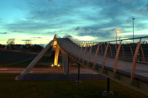 Ponte Leonardo Da Vinci in Norvegia