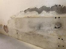 Biodry – Deumidificazione muri