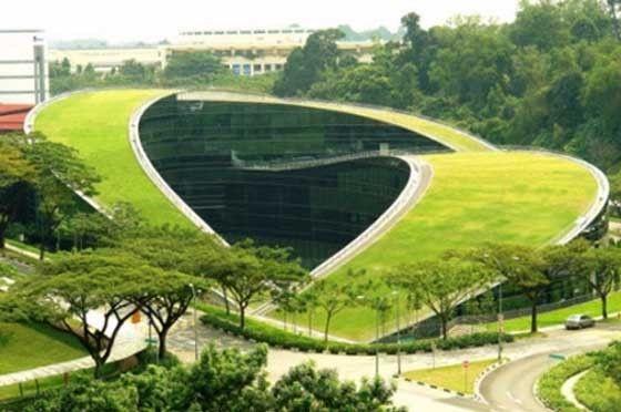 Il tetto verde della Nanyang School of Art