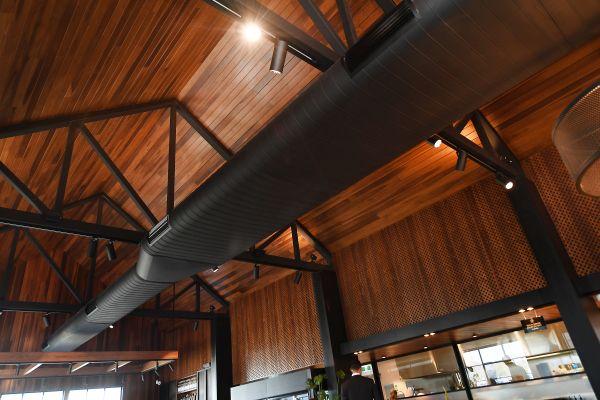 Il tetto della caffetteria HungryFox, una grande distesa di tulipier americano_047 (1)