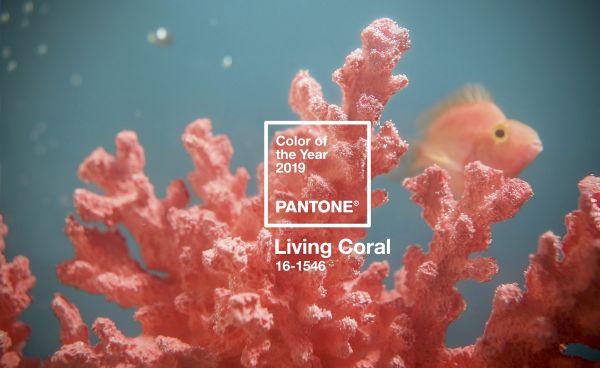 LIVING CORAL, colore Pantone 2019