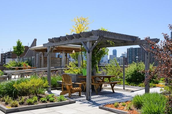 Rooftop garden in ambiente urbano