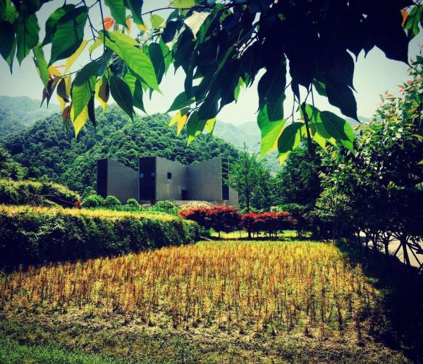 Il Ningbo Duao Art Museum è immerso nella natura