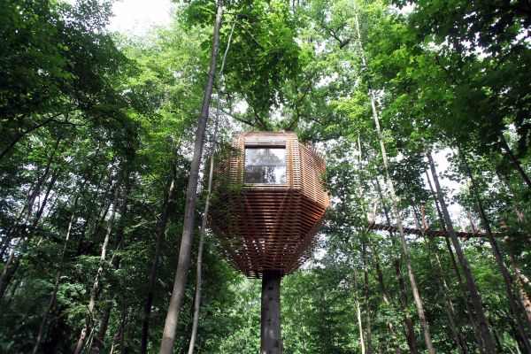 ORIGIN tree house - Photo Marco Lavit (libre de droits)