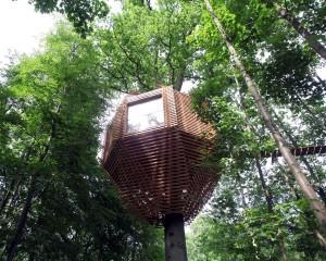 Origin – tree house: una architettura celata dalla natura