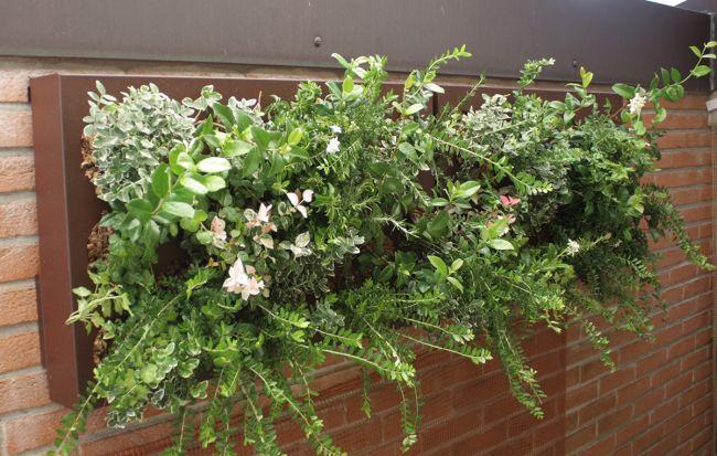 Ortisgreen - HUB, modulo che può ospitare fino a 8 piante