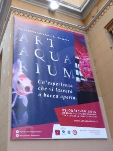 Inaugurata la mostra Art Aquarium a Milano, presso il Circolo Filologico, in anteprima internazionale fuori dal Giappone.