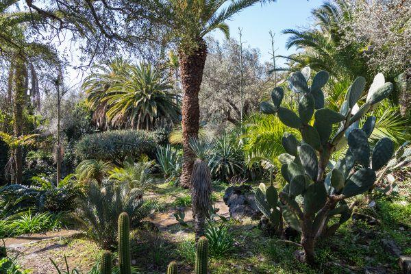 Parco Paternò del Toscano tra i finalisti dei 10 Parchi più belli 2019