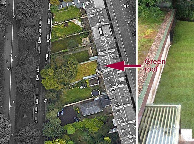 S. Arbert Edimburgo: Il tetto verde a sedum