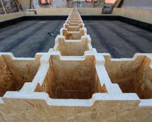 La casa efficiente che si costruisce in 20 giorni