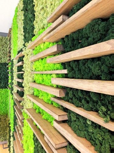 Utilizzo di pareti vegetali per personalizzare gli ambienti interni