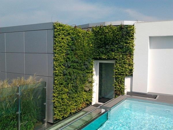 Parete con giardino verticale una collezione di idee per - Giardino verticale in casa ...
