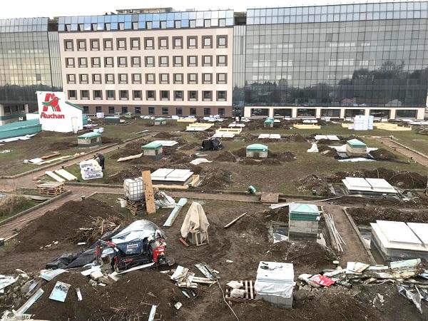 Rifacimento tetto verde Auchan di Monza