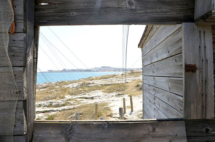 Vieste vista dalla cabina del Trabucco di San Lorenzo