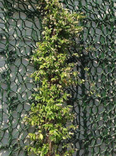 Particolare della griglia Wall-y installata sulla facciata della Dacla