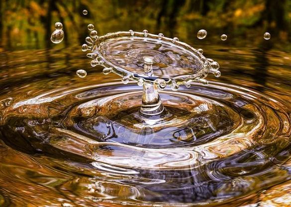 This is water, una riflessione di Alfonso Femia per la Giornata internazionale dell'Acqua