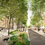 La riforestazione di Roma: 3 milioni di alberi per ringiovanire la città