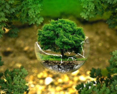Architettura ecosostenibile: cos'è, i principi, i materiali