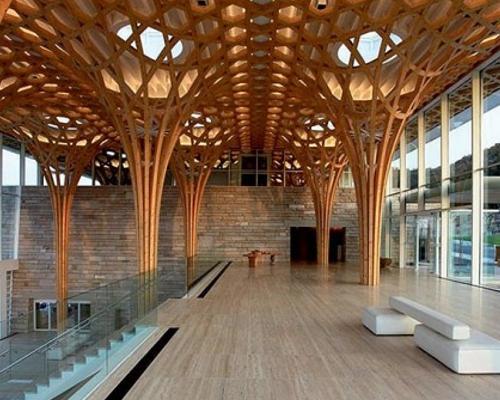 Progettare con il bambù: alla scoperta dell'acciaio vegetale